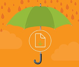 resources vendor management umbrella part four procedures infographic